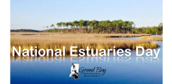 National Estuaries Day: Seaside with a Scientist @ Coastal Resources Center | Moss Point | Mississippi | United States